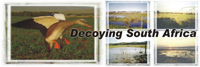 Decoys.co.za
